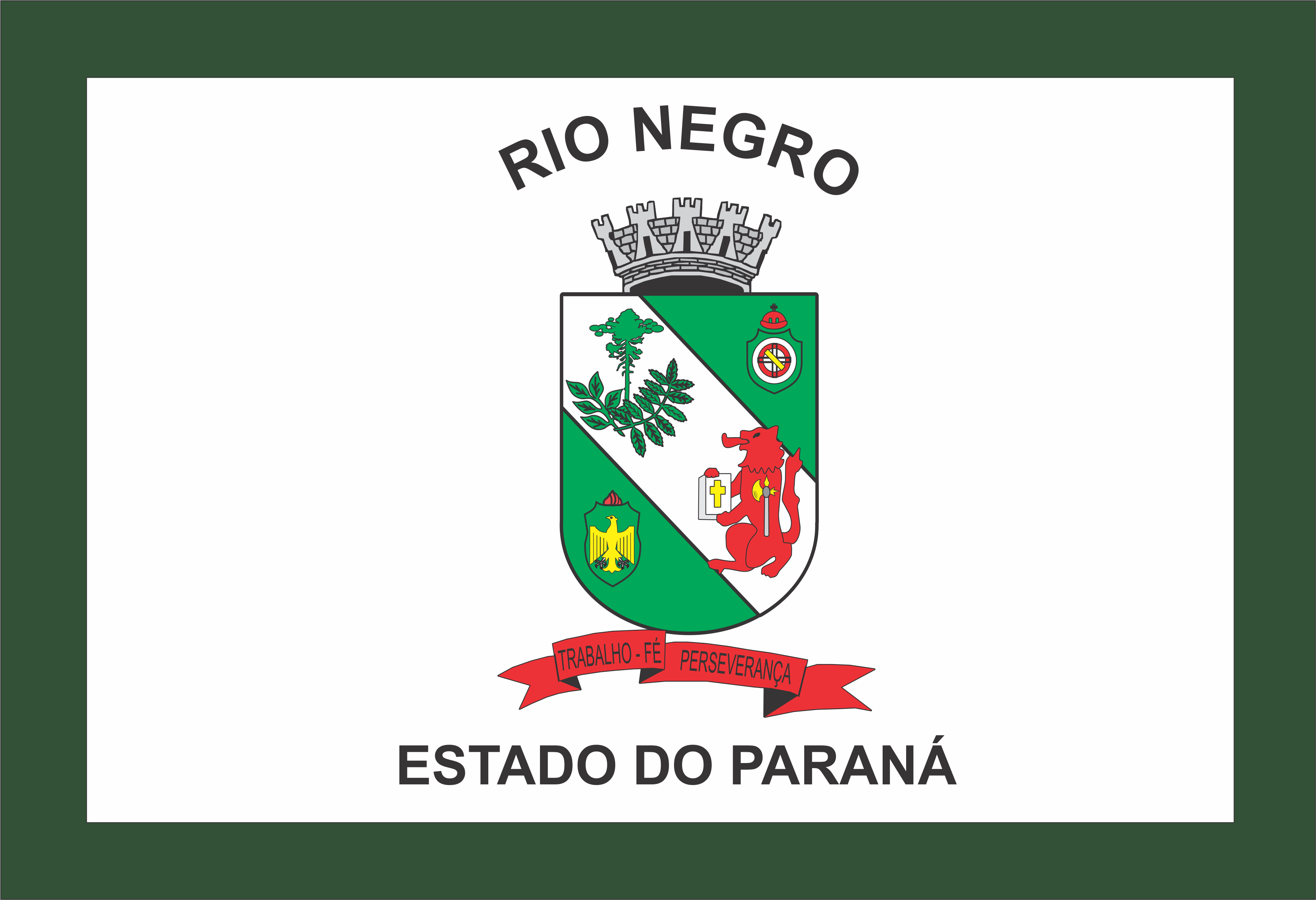 Bandeira do Município de Rio Negro